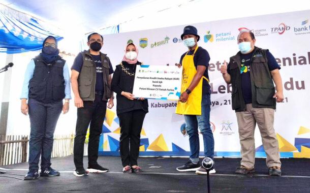 bank bjb Salurkan KUR bagi Petani Milenial Lebah Madu di Tasikmalaya